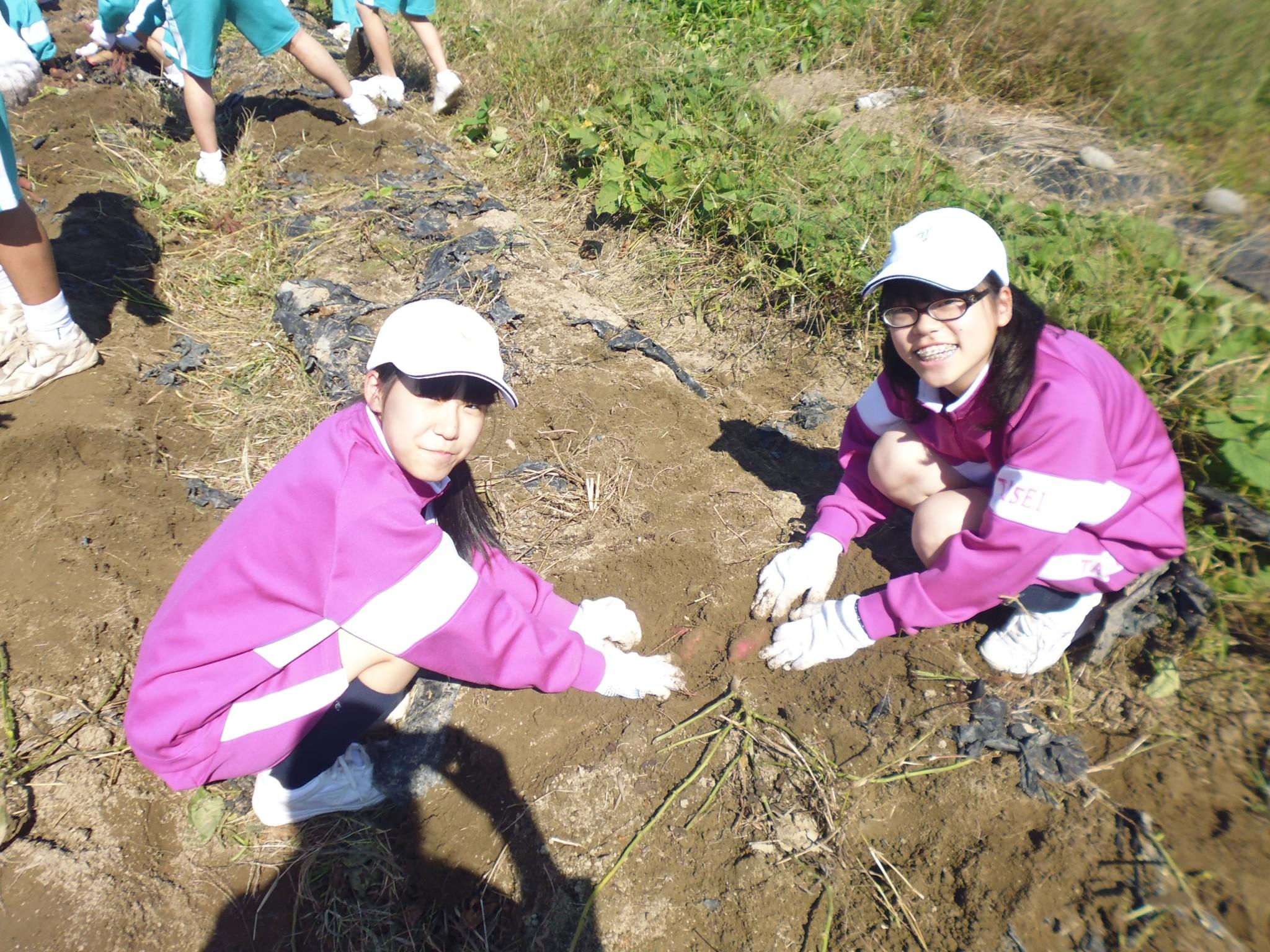 【中2】農業体験